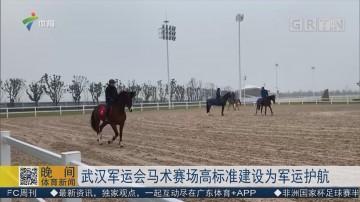 武汉军运会马术赛场高标准建设为军运护航