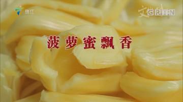 [HD][2019-07-29]文化珠江:菠萝蜜飘香