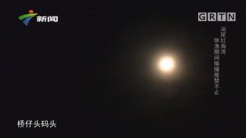 [HD][2019-07-11]社会纵横:汕尾红海湾 休渔期间偷捕屡禁不止