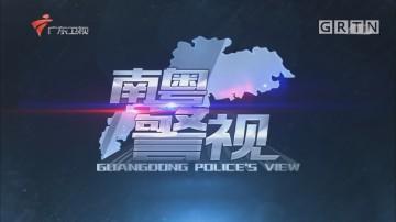 [HD][2019-07-28]南粤警视:村霸覆灭记