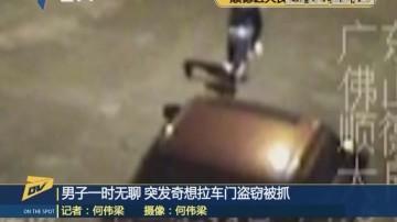 男子一时无聊 突发奇想拉车门盗窃被抓