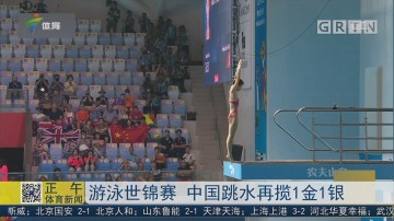 游泳世锦赛 中国跳水再揽1金1银