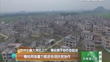 贺州东融大湾区之六:粤桂携手协作助脱贫