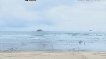 智精湾区:出外旅游成为人们主要休闲方式之一