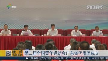 第二届全国青年运动会广东省代表团成立