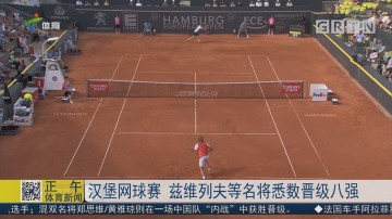 汉堡网球赛 兹维列夫等名将悉数晋级八强