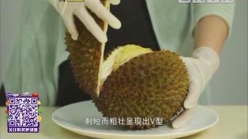 猫山王榴莲