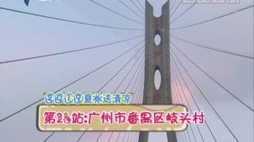 (DV现场)2019夏日送清凉 第21站:广州市番禺区岐头村