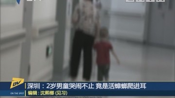 (DV現場)深圳:2歲男童哭鬧不止 竟是活蟑螂爬進耳