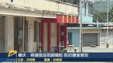 (DV现场)肇庆:商铺接连现眼镜蛇 街坊寝食难安