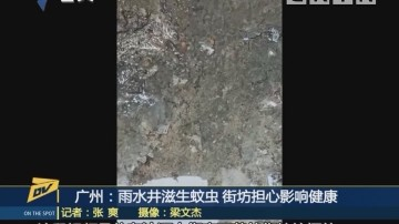 (DV现场)广州:雨水井滋生蚊虫 街坊担心影响健康