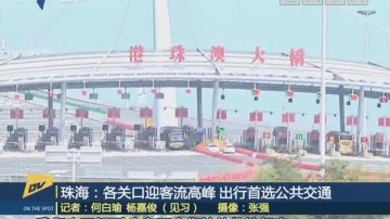 (DV现场)珠海:各关口迎客流高峰 出行首选公共交通