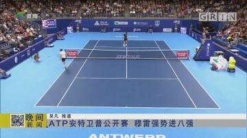 ATP安特卫普公开赛 穆雷强势进八强