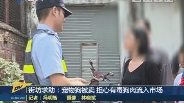 (DV现场)街坊求助:宠物狗被卖 担心有毒狗肉流入市场