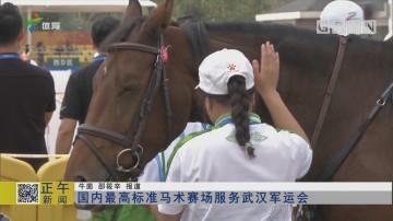 国内最高标准马术赛场服务武汉军运会