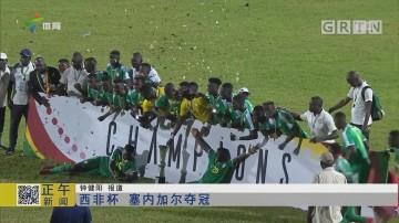 西非杯 塞内加尔夺冠