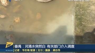 (DV现场)番禺:河涌水突然白 有关部门介入调查
