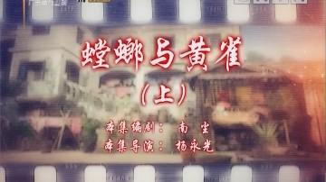 [2019-11-02]七十二家房客:螳螂与黄雀(上)