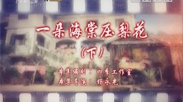 [2019-11-03]七十二家房客:一朵海棠压梨花(下)