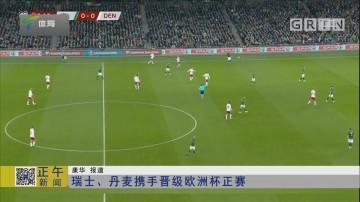 瑞士、丹麦携手晋级欧洲杯正赛