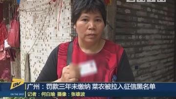 (DV现场)广州:罚款三年末缴纳 菜农被拉入征信黑名单