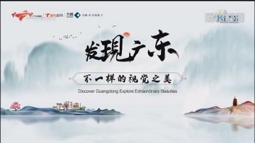 [HD][2019-12-23]发现广东:凤飞单从