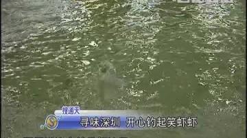 寻味深圳 开心钓起笑虾虾
