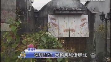 深圳印记 大鹏所城话鹏城