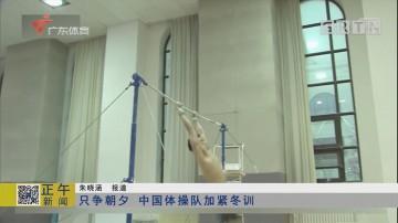 只争朝夕 中国体操队加紧冬训