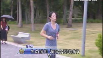 生态深圳 海湾公园绿道行