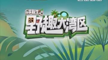 [2020-01-30]乐享新生活-野趣大湾区