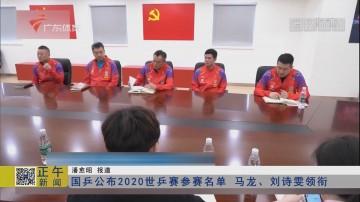 国乒公布2020世乒赛参赛名单 马龙、刘诗雯领衔