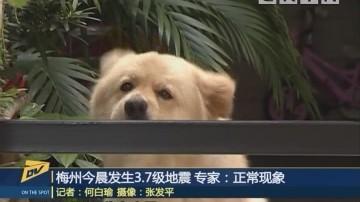 梅州今晨发生3.7级地震 专家:正常现象