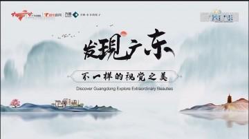 [HD][2020-01-06]发现广东:在路上 遇见最美的你
