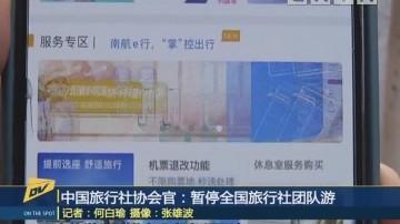 (DV现场)中国旅行社协会官:暂停全国旅行社团队游