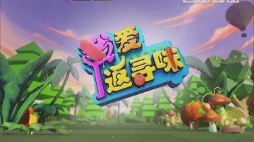 [2020-01-25]我爱返寻味:制作手工水饺