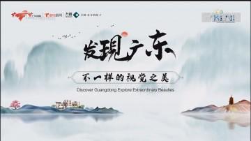 [HD][2019-12-31]发现广东:阳光知味 陈皮凝香