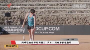 網球聯合會杯即將開打 日本、西班牙積極備戰