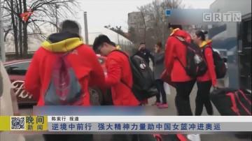 逆境中前行 强大精神力量助中国女篮冲进奥运