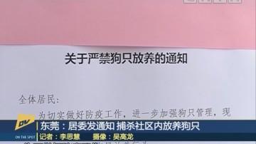 (DV现场)东莞:居委发通知 捕杀社区内放养狗只