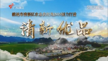 [HD][2020-02-10]摇钱树:清新石湖一点红番薯