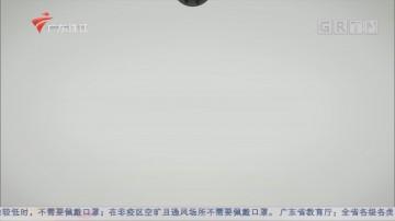 [HD][2020-02-10]文化珠江:抗击疫情——来自文艺者的战线