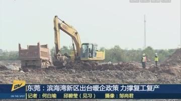 (DV現場)東莞:濱海灣新區出臺暖企政策 力撐復工復產