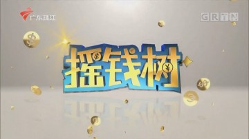 [HD][2020-02-03]摇钱树:北乡马蹄