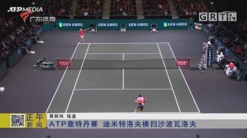 ATP鹿特丹赛 迪米特洛夫横扫沙波瓦洛夫