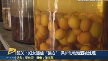 """(DV现场)韶关:妇女迷信""""偏方"""" 保护动物泡酒被处理"""