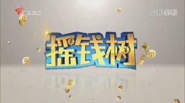 [HD][2020-02-17]摇钱树:走马巴彦淖尔品胡羊