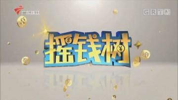 [HD][2020-03-24]摇钱树:农科院专家备春耕