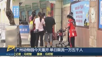 (DV现场)广州动物园今天重开 单日限流一万五千人
