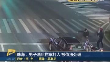 (DV现场)珠海:男子酒后拦车打人 被依法处理